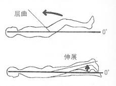 股関節の屈曲と伸展の関節可動域
