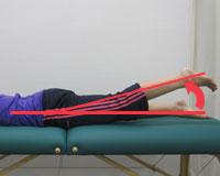 股関節伸展の関節可動域