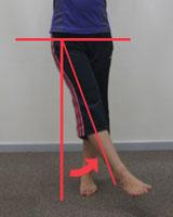 股関節内転の関節可動域