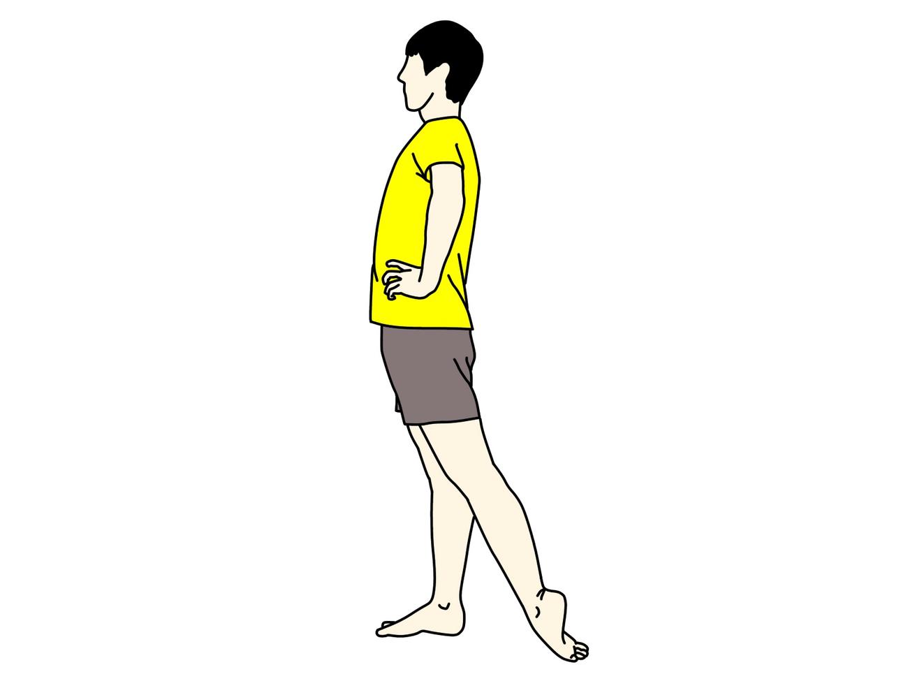 足の甲〜スネの筋肉(前脛骨筋)のストレッチのイラスト