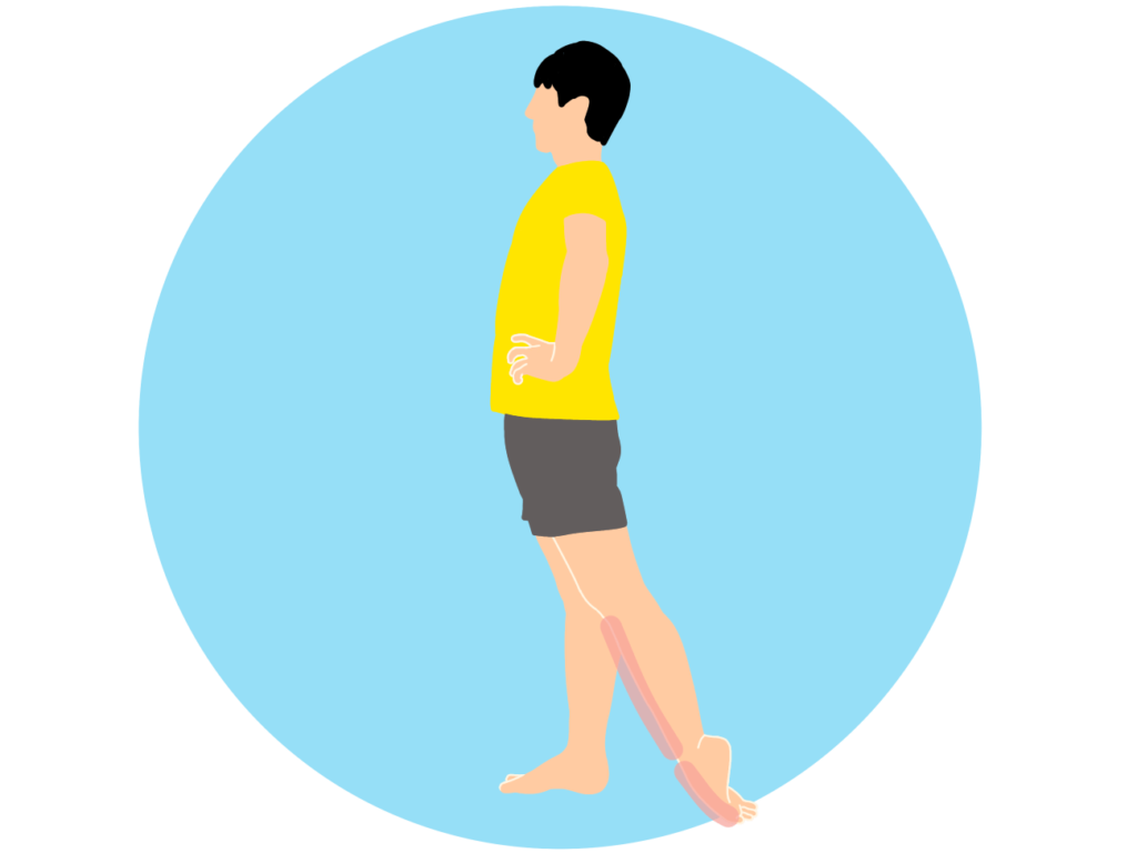 足の甲〜スネの筋肉(前脛骨筋)のストレッチの方法