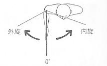 肩関節の外旋