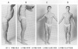 骨盤の前傾・後傾、側方傾斜、水平回旋