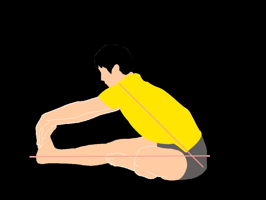 ハムストリングスのストレッチの動作が柔らかくなっていくイメージ