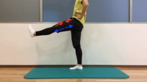股関節の屈曲動作の際の筋収縮