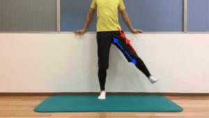股関節の外転動作の際の筋収縮