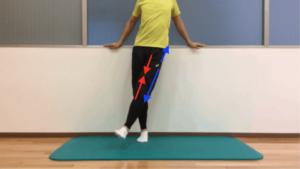股関節の内転動作の際の筋収縮