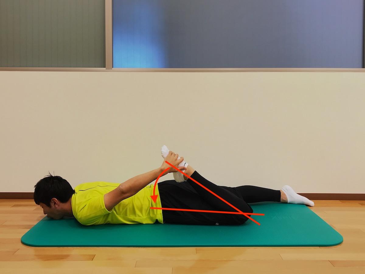 ひざ関節の屈曲動作