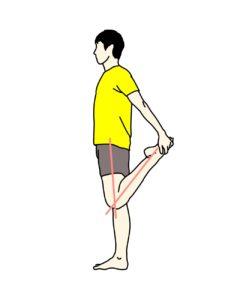 立った姿勢で行うもも前(大腿四頭筋)のストレッチ