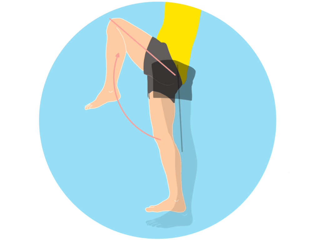 股関節を曲げる動作(股関節の屈曲)
