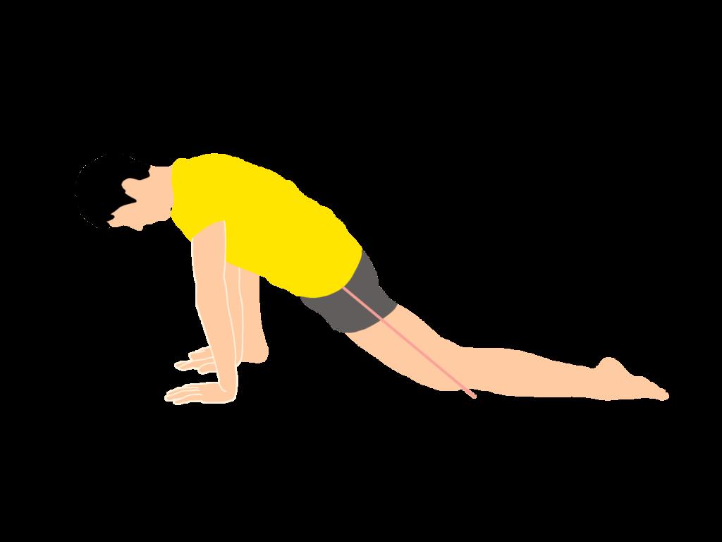 腸腰筋のストレッチの動作が柔らかくなっていくイメージ