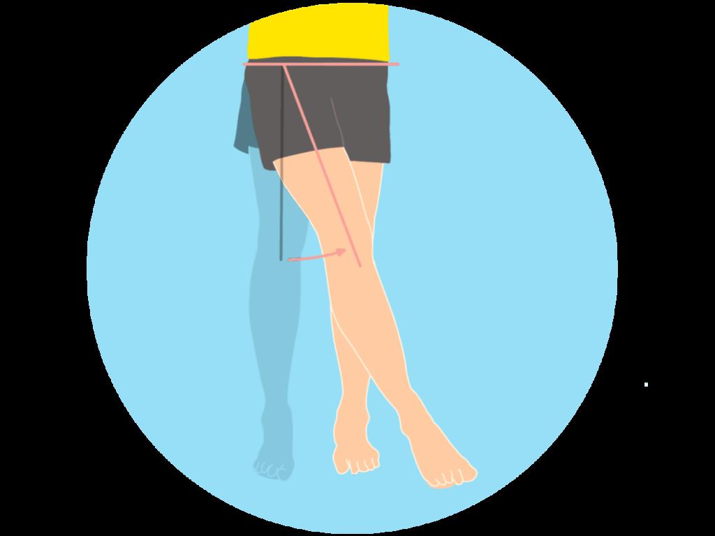 脚を内に閉じる動作(股関節の内転)