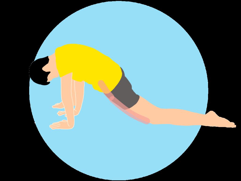 四つ這いで行う骨盤前〜もも前(腸腰筋・大腿直筋)のストレッチ