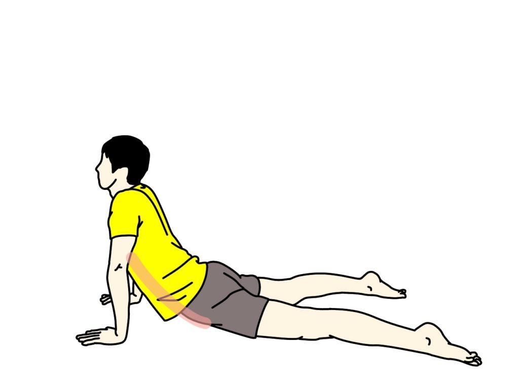 腹筋のストレッチで伸びる場所
