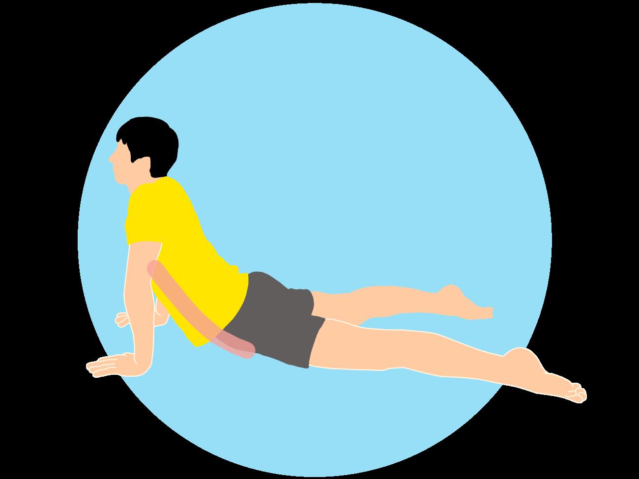 体幹のストレッチの方法一覧