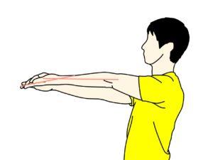手の平〜腕の筋肉(前腕屈筋群)のストレッチの方法