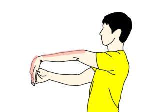 手の平〜腕のストレッチで伸びる場所