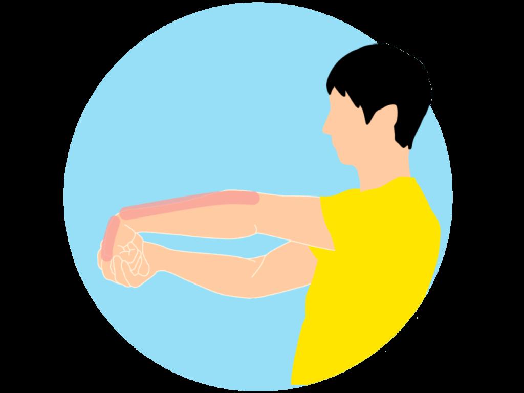手の甲〜腕の筋肉(前腕伸筋群)のストレッチ