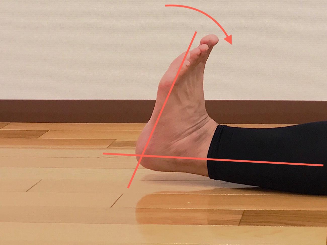 足関節を曲げる動作(背屈)が柔らかい場合