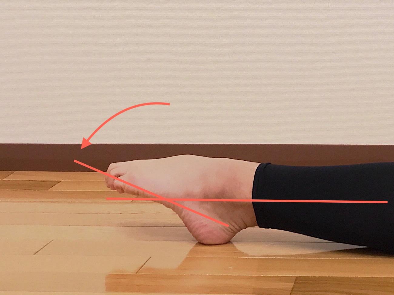 足関節を伸ばす動作(底屈)が柔らかい場合
