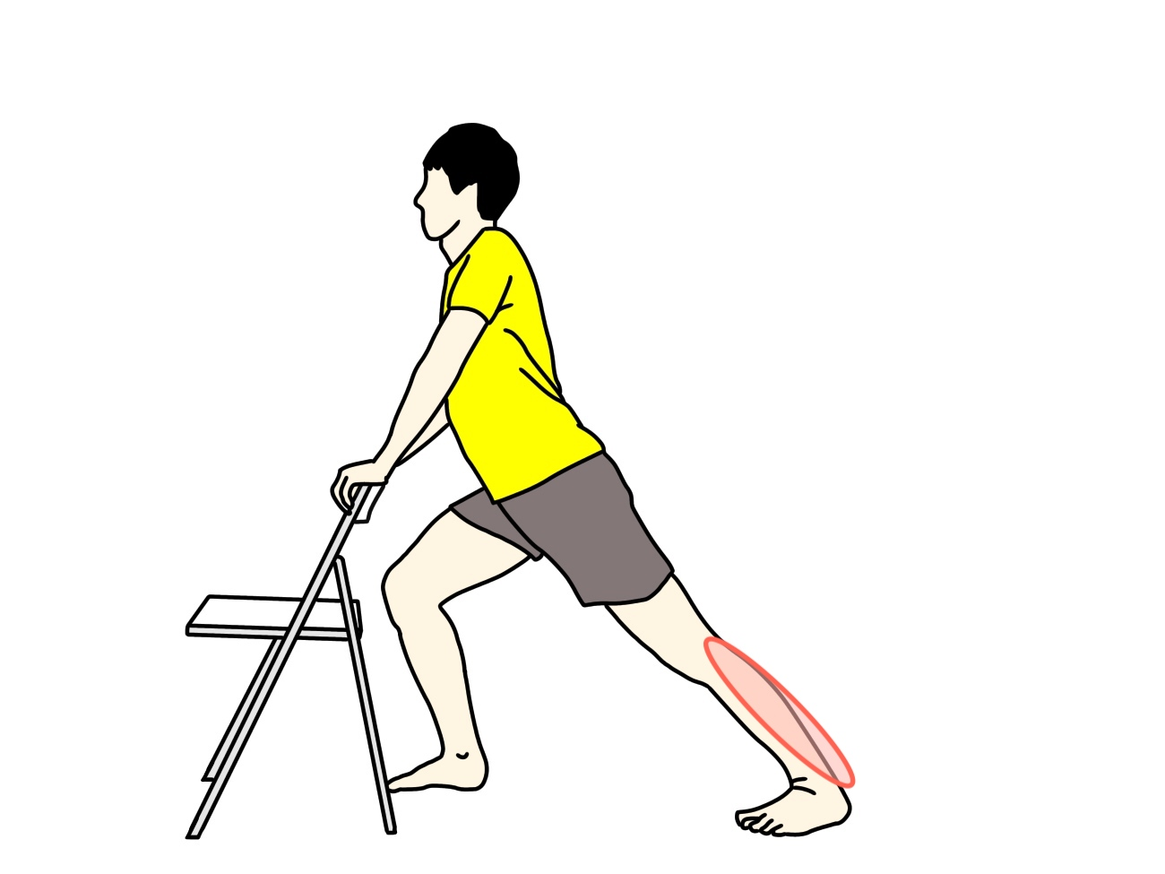 椅子につかまって行うふくらはぎの筋肉(下腿三頭筋)のストレッチで伸びる場所