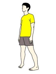 スネの外側の筋肉(長腓骨筋)のストレッチの方法