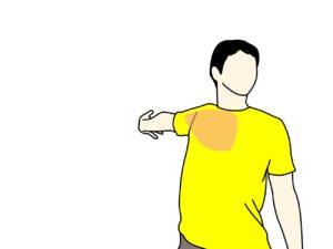 大胸筋のストレッチで伸びる場所