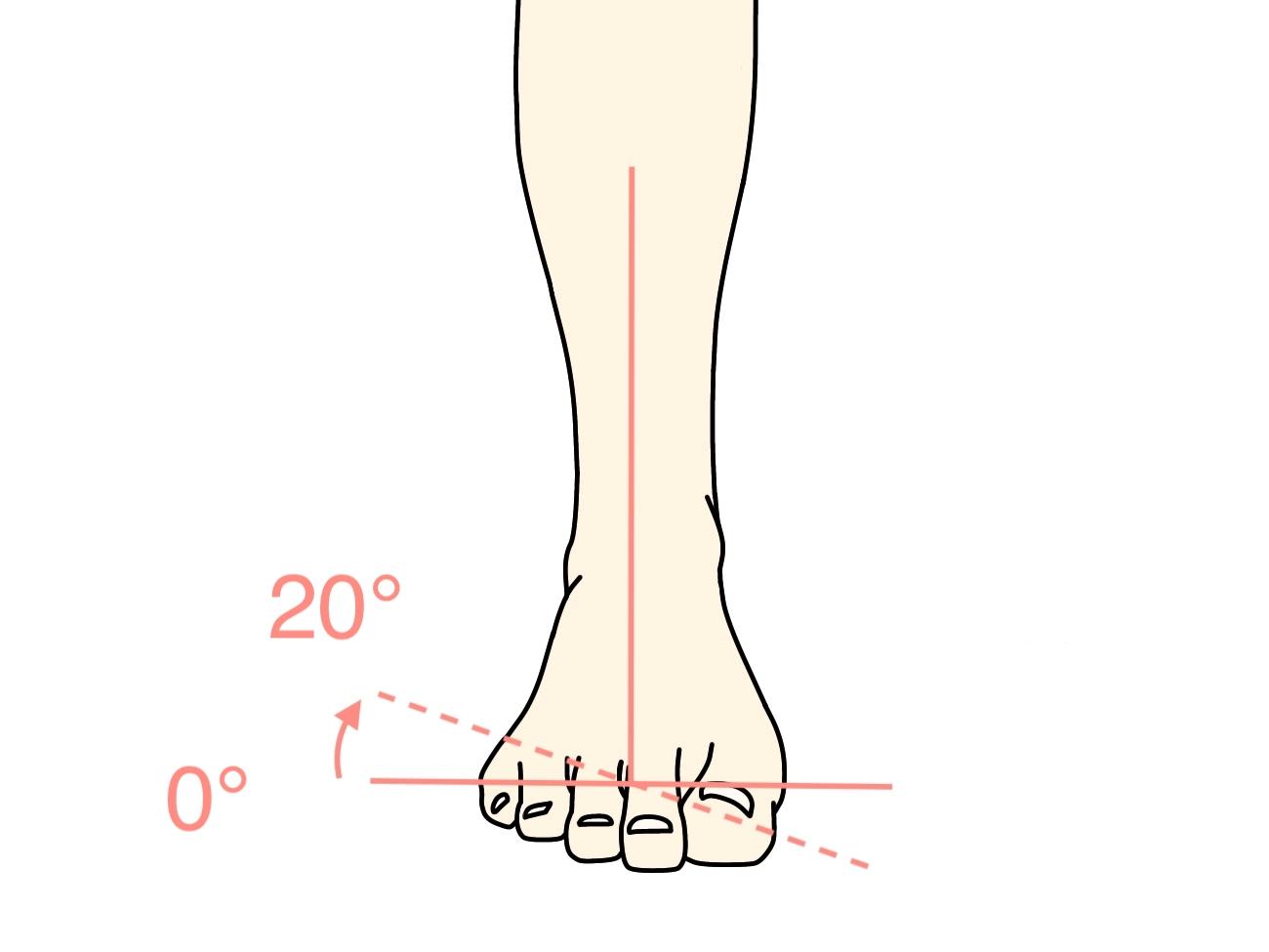足の底を外側に向ける動作(足の外反)の関節可動域(ROM)と働く筋肉のまとめ
