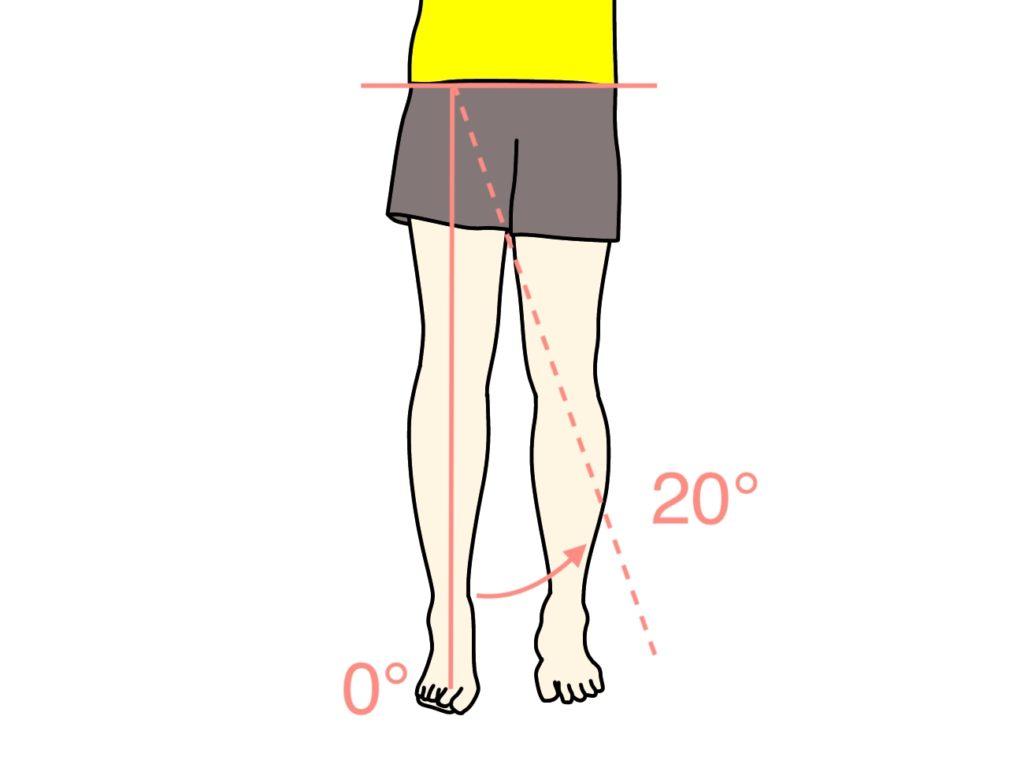 脚を内側に閉じる動作(股関節の内転)の関節可動域(ROM)