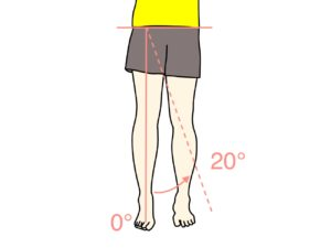 脚を内側に閉じる動作(股関節の内転)の関節可動域(ROM)と働く筋肉のまとめ