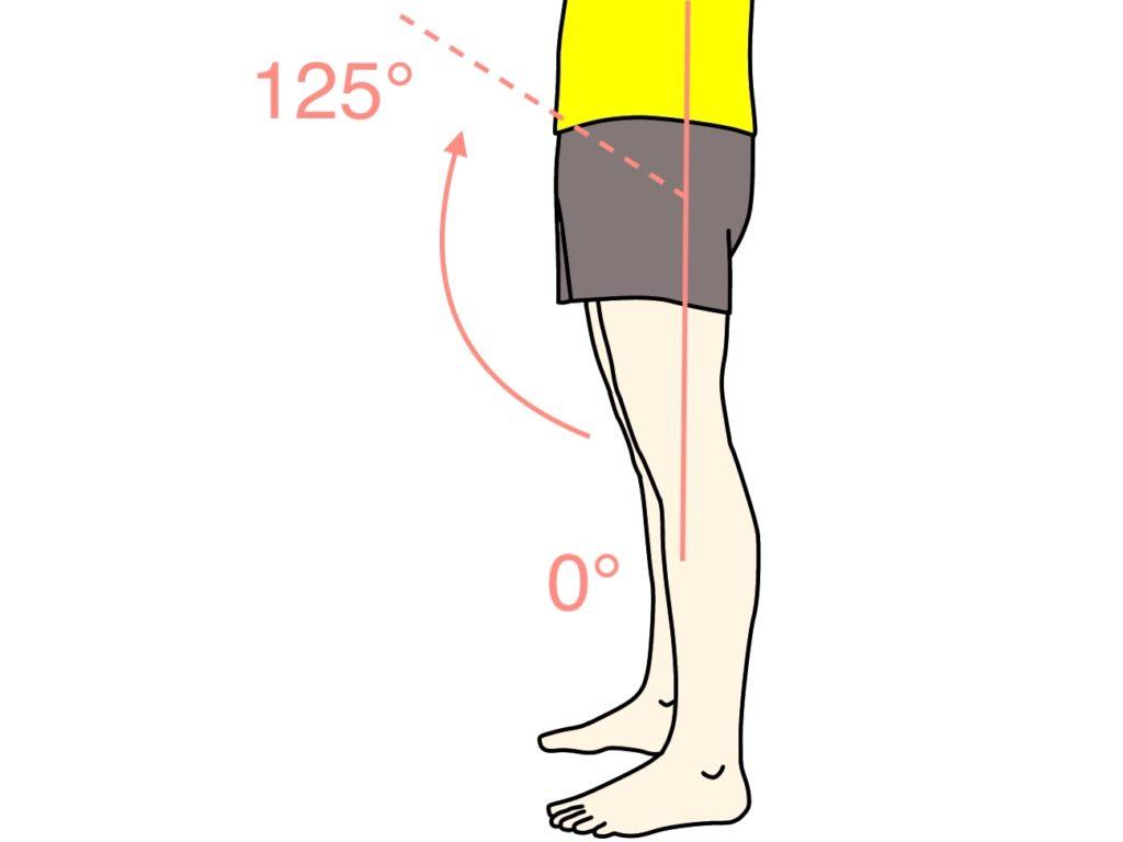 脚を前に上げる動作(股関節の屈曲)の関節可動域(ROM)
