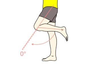 膝を伸ばす動作(膝関節の伸展)の関節可動域(ROM)と働く筋肉のまとめ