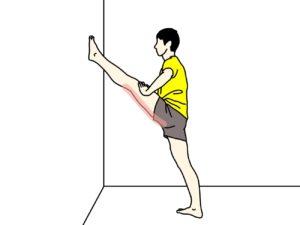 壁に足をつけて行うもも裏(ハムストリングス)のストレッチで伸びるところ