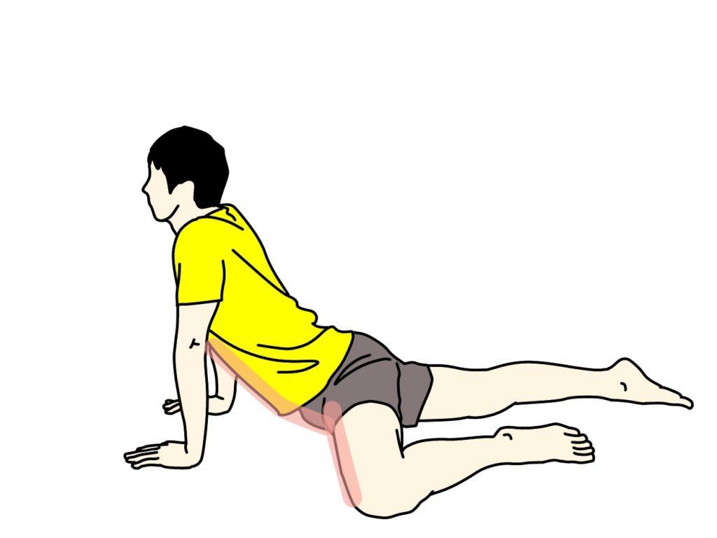 腹筋と内もものストレッチで伸びる場所