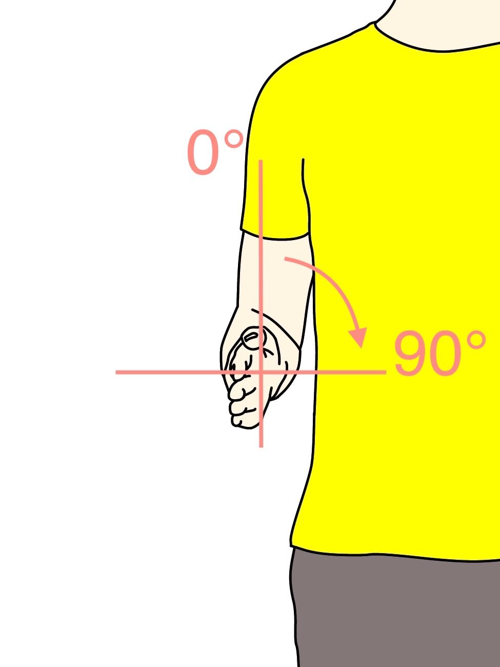 前腕(橈尺関節)の回内動作の関節可動域(ROM)と働く筋肉のまとめ