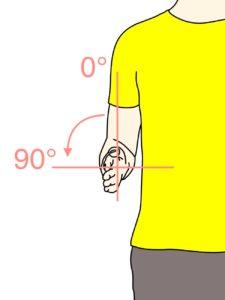 前腕(橈尺関節)の回外動作の関節可動域(ROM)と働く筋肉のまとめ