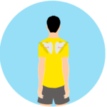 肩甲骨の内転