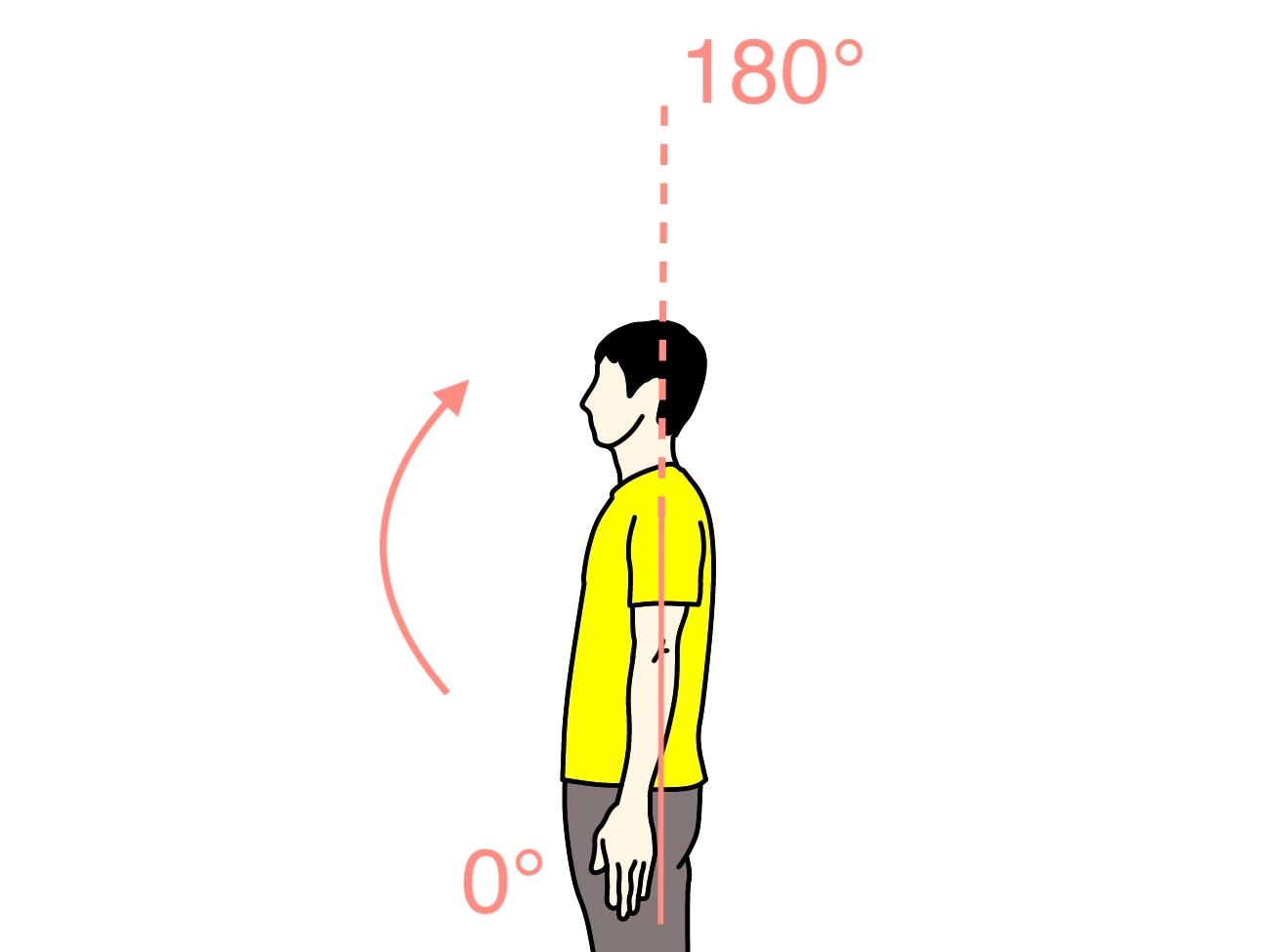 腕を前に上げる動作(肩関節の屈曲)の関節可動域(ROM)と働く筋肉のまとめ
