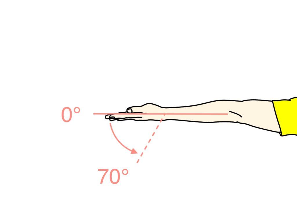 手首を伸ばす動作(手首の伸展)に作用する筋肉と関節可動域(ROM)