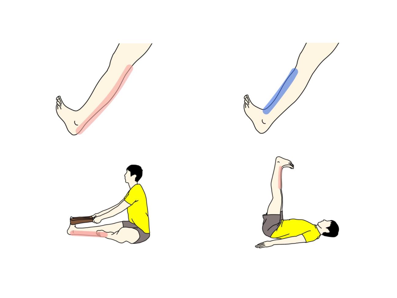 足首を曲げる動作(背屈)を柔らかくするためのストレッチとトレーニング