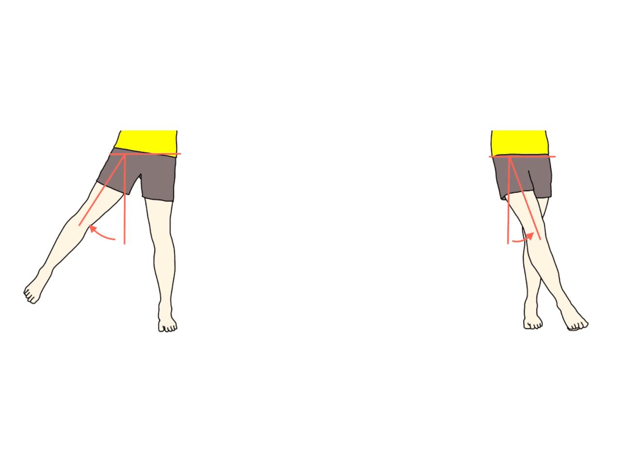 下肢の動作の拮抗筋