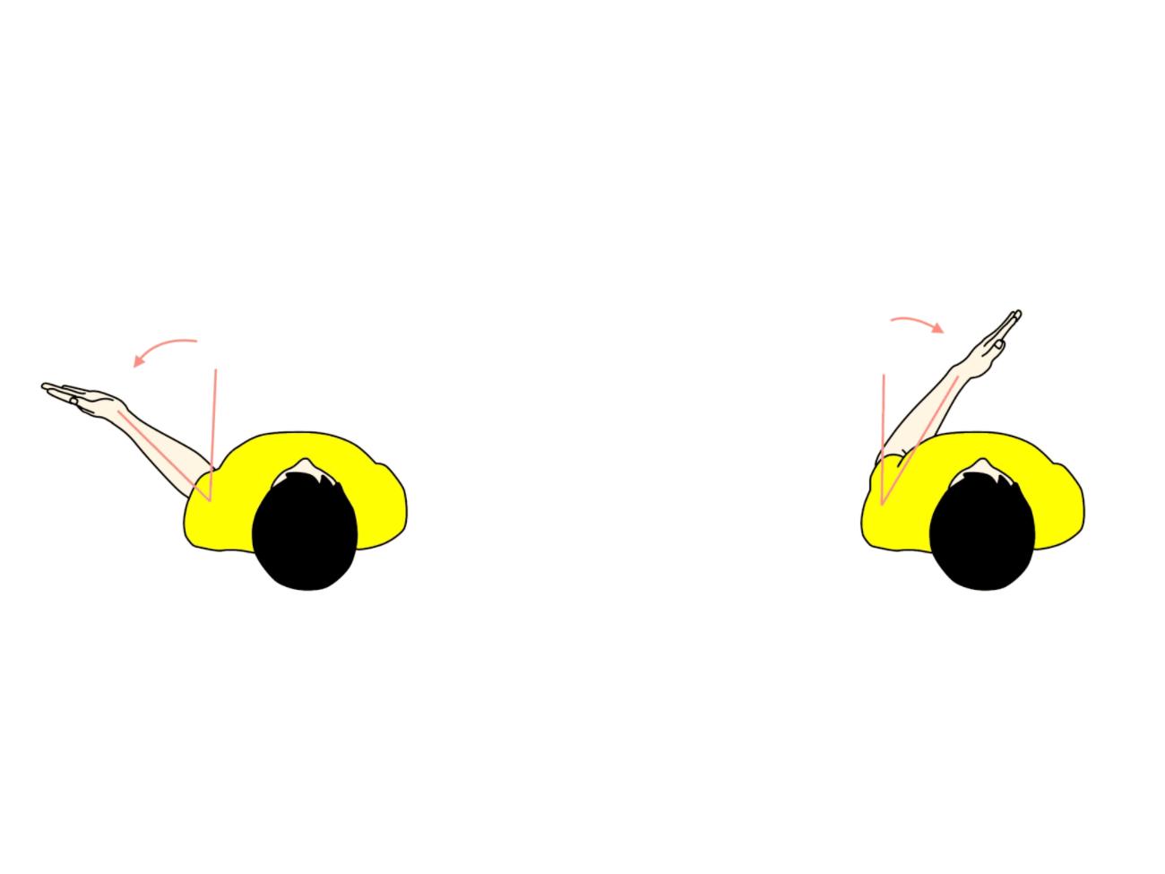 肩関節の外旋と内旋の拮抗筋