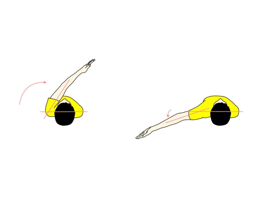 肩関節の水平屈曲と水平伸展の拮抗筋