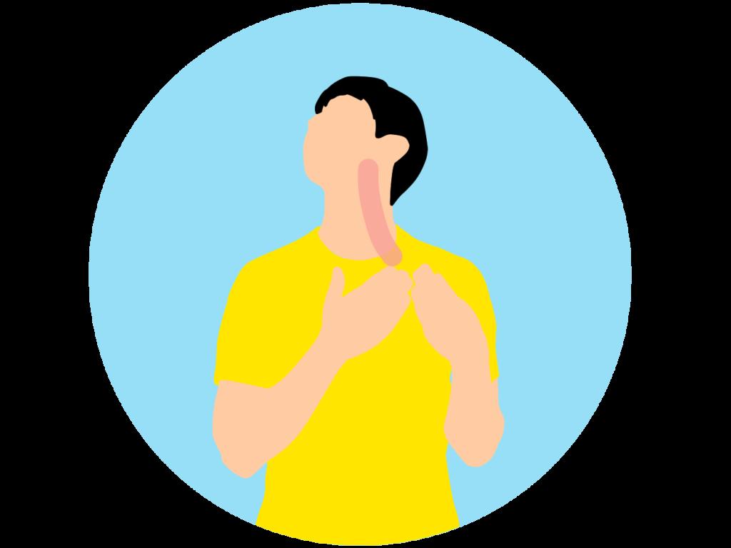 顎〜喉(胸鎖乳突筋・斜角筋)のストレッチ