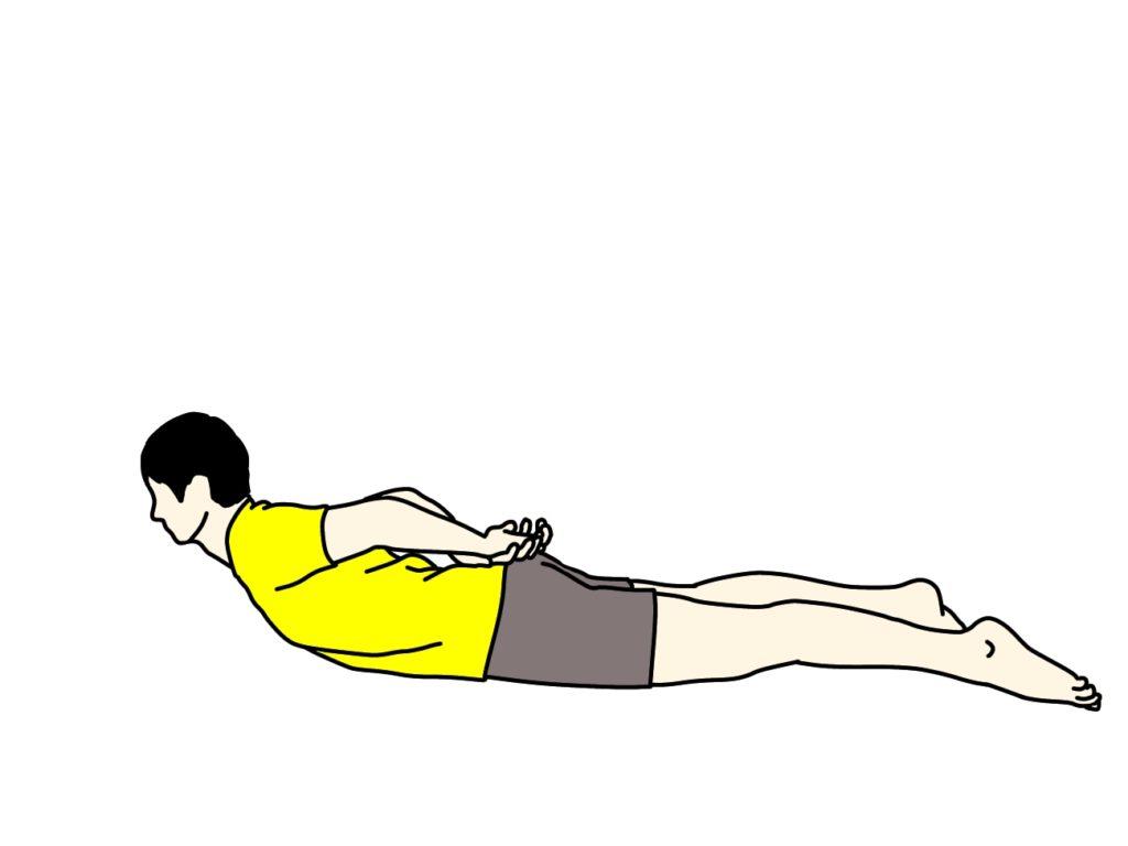 背筋(脊柱起立筋)のトレーニング【体幹トレーニング】