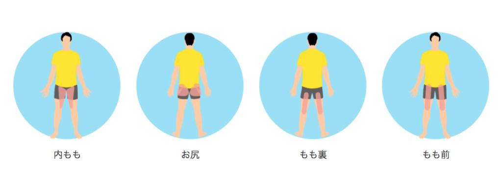 椅子に座ったまま気軽に行える腰まわりがスッキリするストレッチで伸びる筋肉