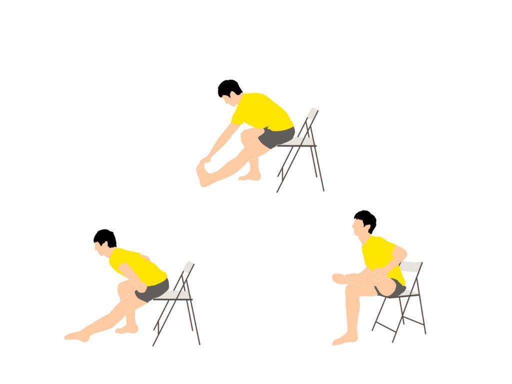 椅子に座りながらできる前屈を柔らかくするためのストレッチプログラム