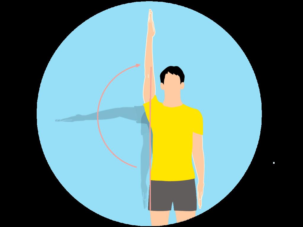 腕を外側に上げていく動作(肩関節の外転)