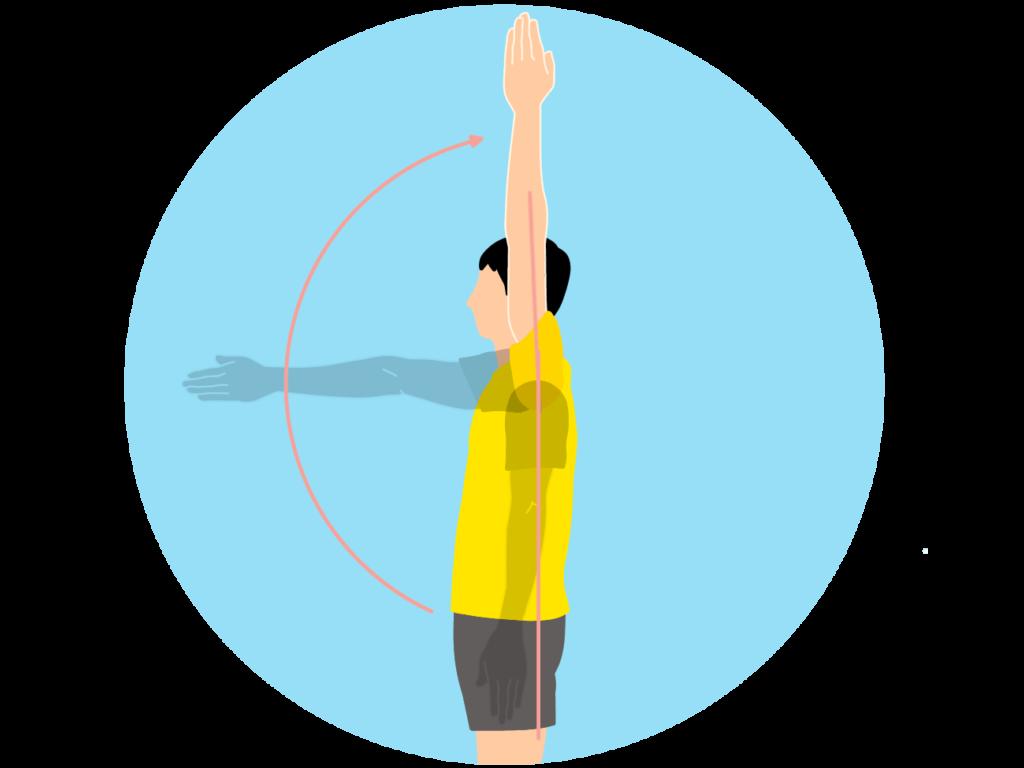腕を前に上げる動作(肩関節の屈曲)