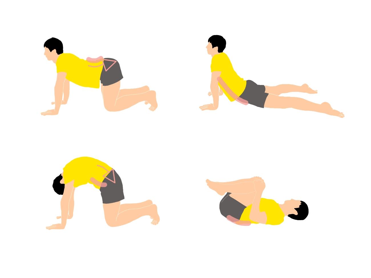 骨盤の前傾と後傾を意識して行う腹筋と背筋のストレッチ